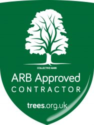 VMS Double Badged AA APPROVED Contractor